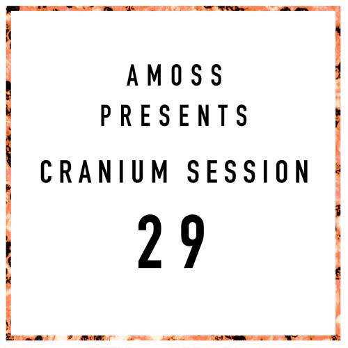 Cranium Session 29