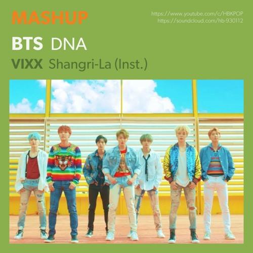 MASHUP] 방탄소년단 BTS - DNA / VIXX - 도원경 Shangri-La (Inst ) by