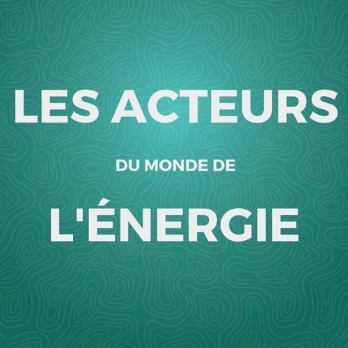 Acteurs du monde de l'énergie: Marc Gueniat