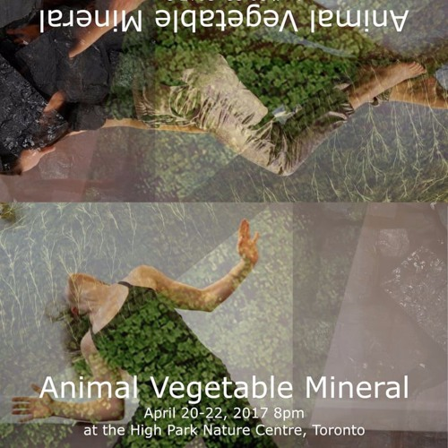 music for Blue Ceiling Dance: Animal, Vegetable, Mineral
