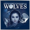 Selena Gomez X Marshmello - Wolves AXEON Remix_144p-mc.mp3