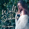 VMC & Amannda - Walls Of Science (Original Mix) OUT NOW!!