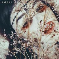 Amani - Tranform (Kells Remix)