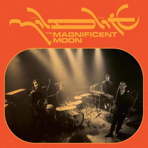 Mildlife - The Magnificent Moon