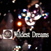 Wildest Dreams (Taylor Swift cover)