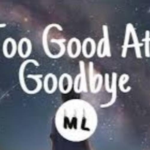 Sam Smith - Too Good At Goodbyes (Lyrics) by Te Araroa