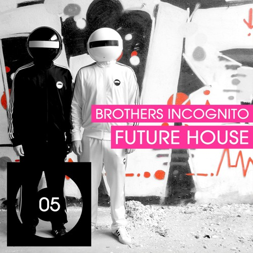 Brothers Incognito - Future House