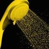 Golden Memories, Golden Showers