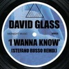 David Glass | I Wanna Know (Stefano Russo remix)