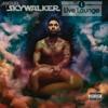 Miguel Sky Walker 1 Live Lounge Remix Mp3