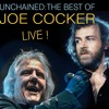 Many Rivers to cross, from live show, UNCHAINED The Best of JOE COCKER LIVE show