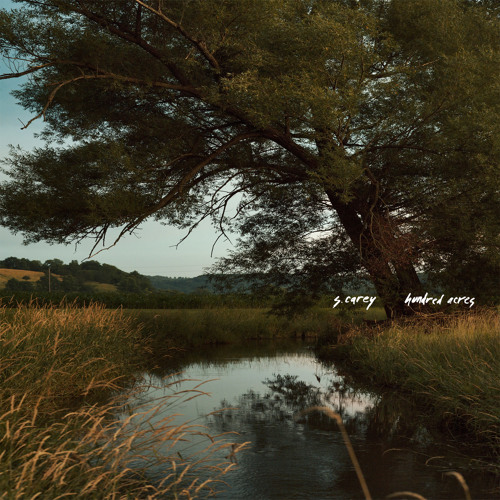 S. Carey - Fool's Gold