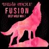 Irish Wolf Fusion - Deep House Music Mix 7