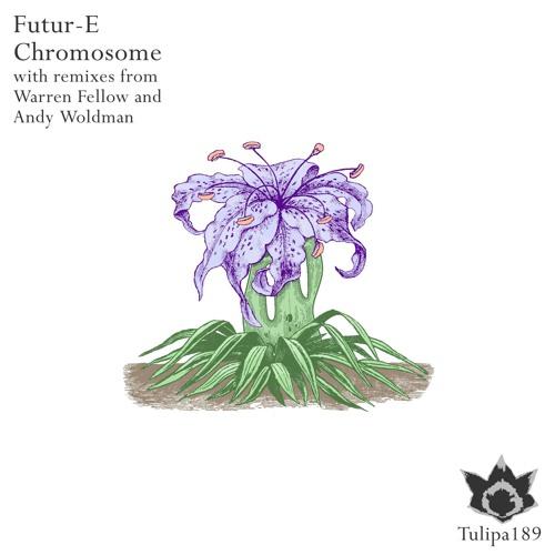 Futur-E - Chromosome (Andy Woldman Remix)