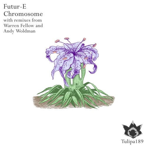 Futur-E - Chromosome (Original Mix)