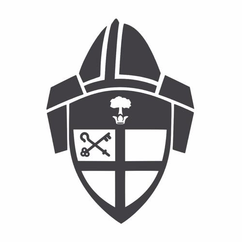 Bishop's Charge 2017