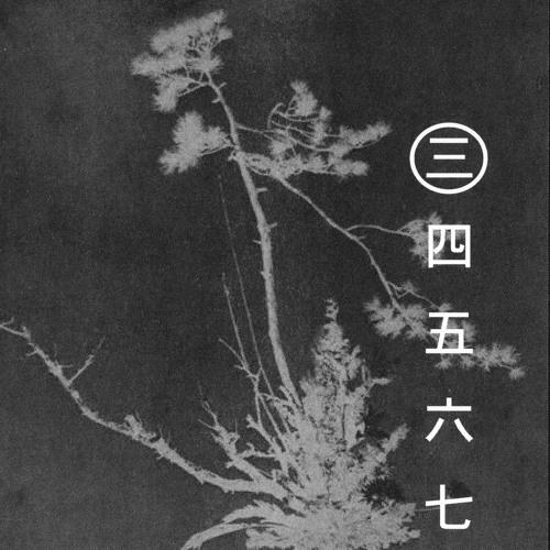 The Ikebana Series: Morgan Cuinet (Hands In The Dark)