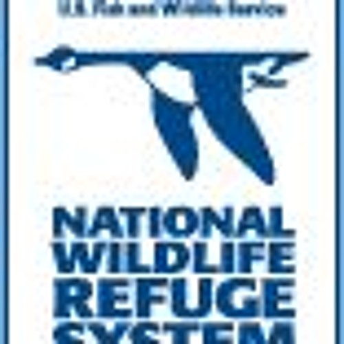 Blackwater National Wildlife Refuge with Matt W