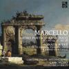 Sonata a tré, viola di gamba, violoncello e basso continuo in Do Minore, Op. 2 No. 2: IV. Presto
