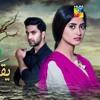 Yakeen Ka Safar HUM TV (NO DIALOGUES)