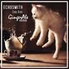 Echosmith - Cool Kids (GingerAle Remix)