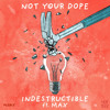 Not Your Dope - Indestructible ft. MAX [Plsble Remix]