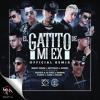 Benny Benni Ft Brytiago Noriel Darkiel Pusho Juhn Pacho Gigolo & La Exce - El Gatito De Mi Ex Remix