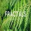 Math in Nature - Fractals in The Botanical Gardens