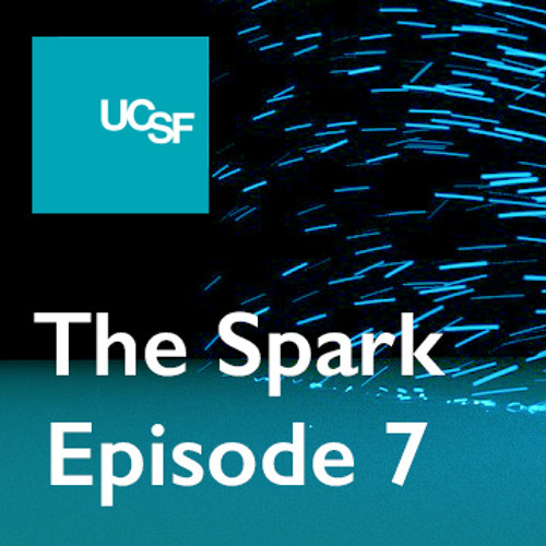 The Spark, Episode 7: Reflections on Medical School