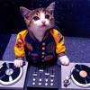 DJ INGAT INGAT KAMU DANGDUT REMIX 2017.mp3