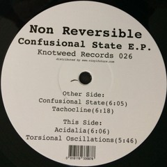 KW026 - Non Reversible - Confusional State E.P.
