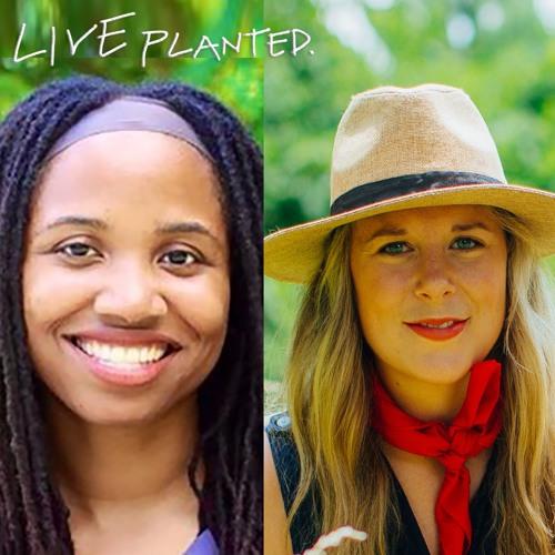 #084 Q&A w Monique of Brown Vegan: Holiday How-To, Fav Veg Eats, Feeling Weak When Vegan & Thrifting