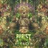 Purist - Aumpram (Album preview) Sangoma Records