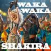 Shakira - Waka Waka (This Time for Africa)(BONKERS EDIT)