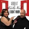 SERHAT Feat MARTHA WASH - I Didnt Know (Cutmore Radio Edit)