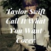 Taylor Swift - Call It What You Want (Cover)