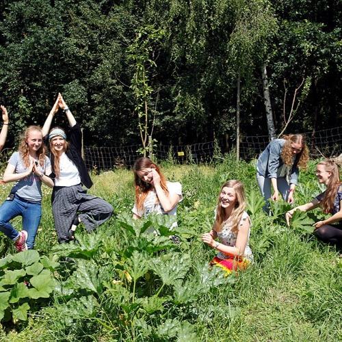 Der Weg Der Möhre - ist die solidarische Landwirtschaft unsere Zukunft?
