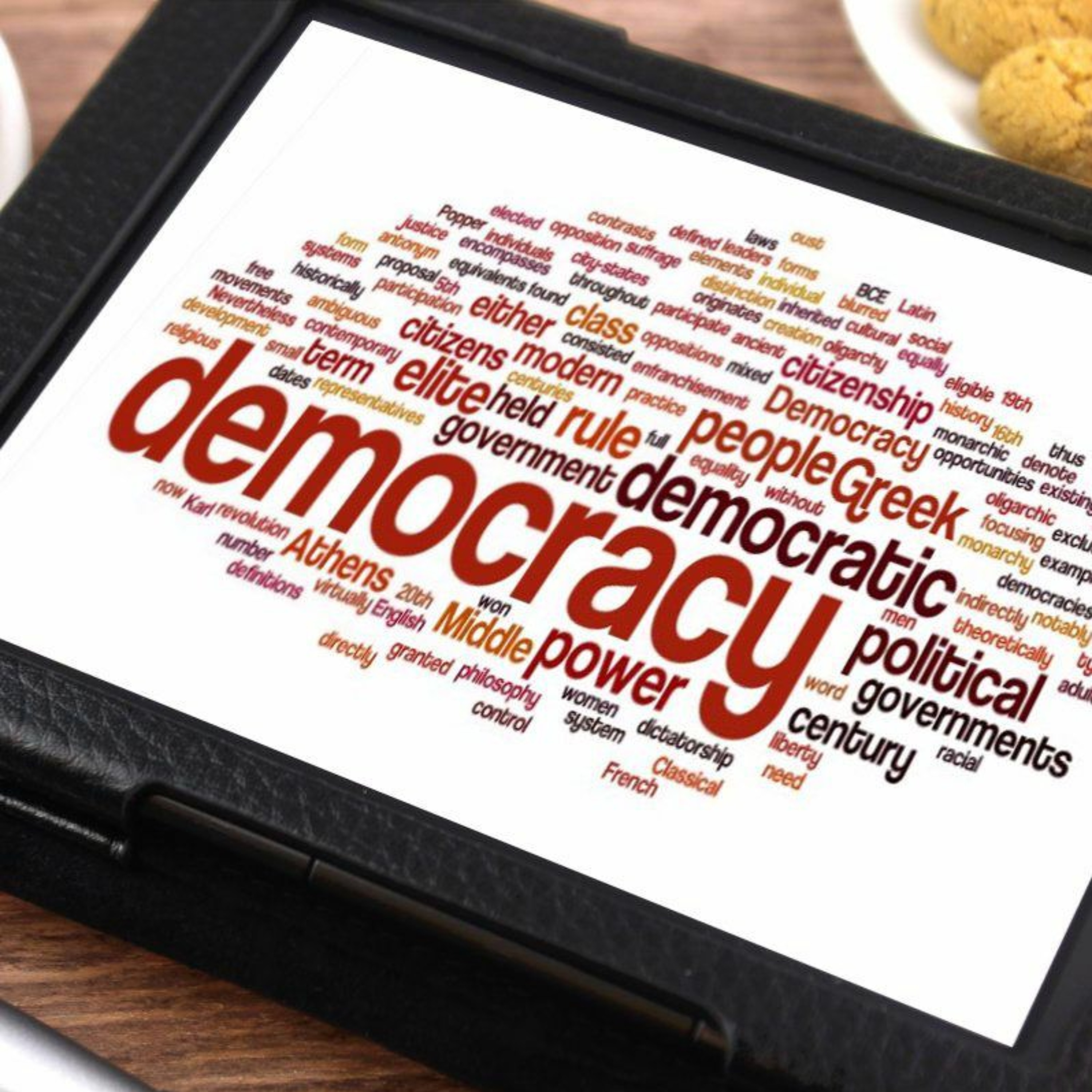 What is the Purpose of Democracy in...
