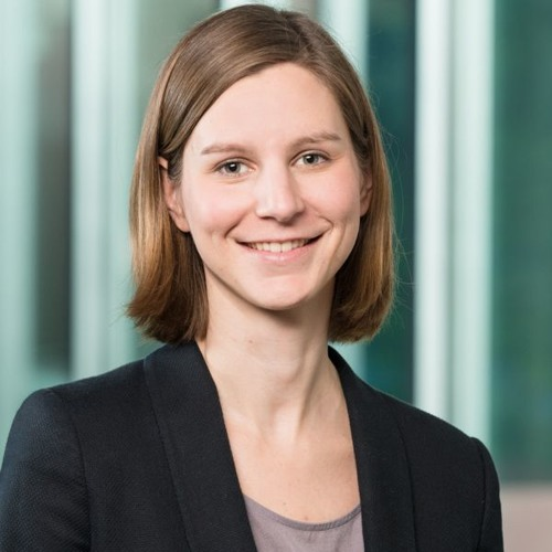 Increasing ambitions: Sonja Thielges on the impact of Trump's policy on the climate talks in Bonn