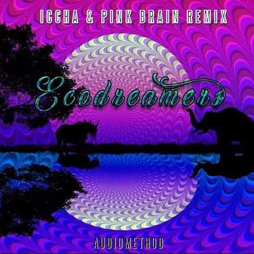 Audiomethod - ECODREAMERS  (Iccha, Pink Brain - Remix) free download OUT NOW!!!