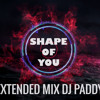 SHAPE OF YOU EXTENDED MIX DJ PADDY