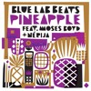 Download Pineapple (Feat. Moses Boyd & NÉRIJA) Mp3