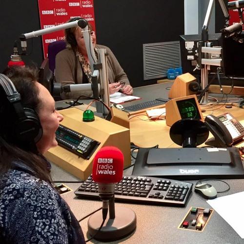 BBC Radio Wales Arts Show   Sarah Jane Brown   8 November 2017