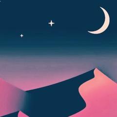 Moonlight Night in a Bag