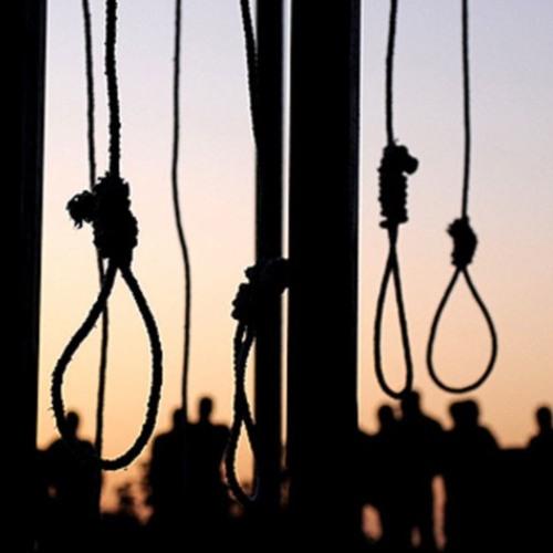دیدگاهها/ محدود شدن مجازات اعدام برای مجازاتهای مربوط به مواد مخدر