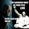 Teri Aankhon Main In Your Eyes Nusrat Fateh Ali Khan & Peter Gabriel