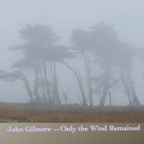 John Gilmore - Only The Wind Remained