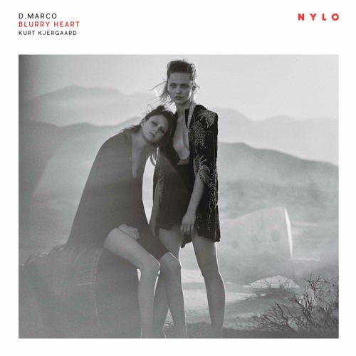 D.Marco - Blurry Heart (Original Mix) | NYLO MUSIC NYLO065