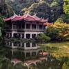 Dawn in Japan | Strings, Soft, Healing, Acoustic, Oriental