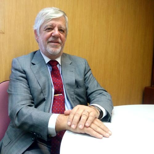 Espaço da Comunidade Portuária de Sines – Carlos Vasconcelos, Director-Geral da MSC Portugal